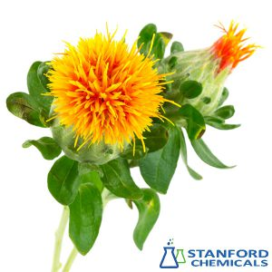 Safflower Yellow