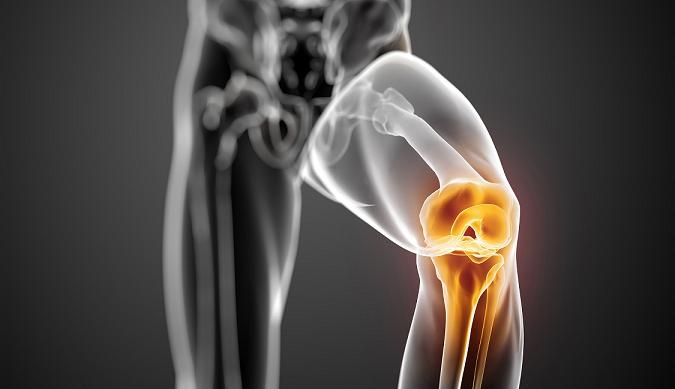 glucosamine sulfate for knee