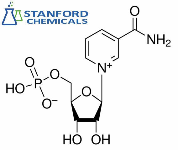 nicotinamide mononucleotide